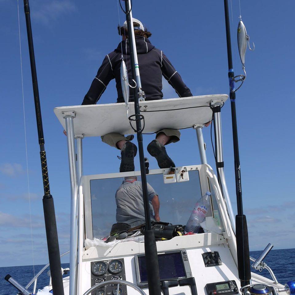où trouver les chasses de thon