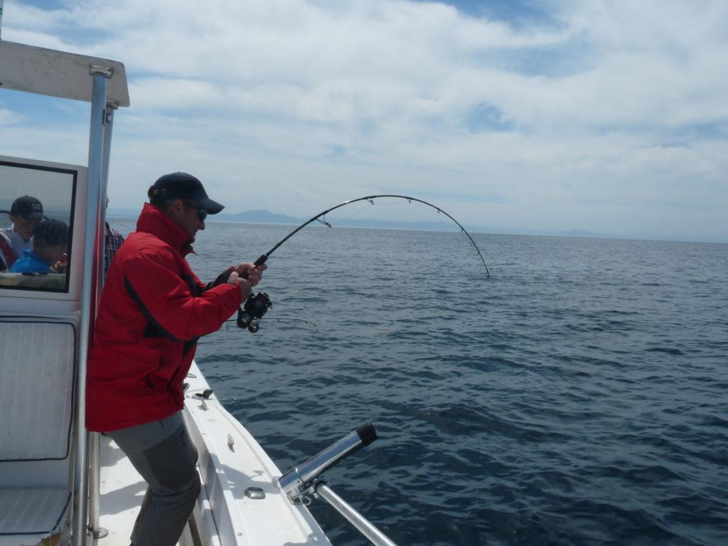 comment pêcher les congres