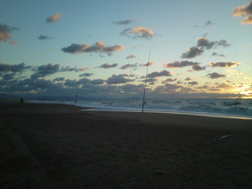 pêche du bar en surfcasting